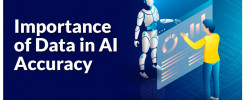 Data Accuracy and AI Quality